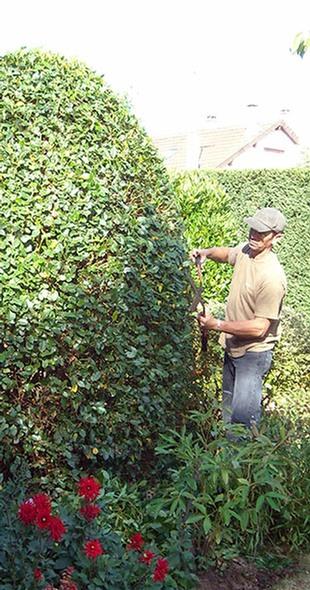 Entretien De Jardin La Queue Les Yvelines 78 Yvelines Jardinier
